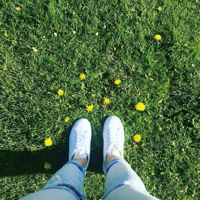 The grass is always greener on the other side 🦋🌼#adidas#stansmith#white#grass#staypositive
