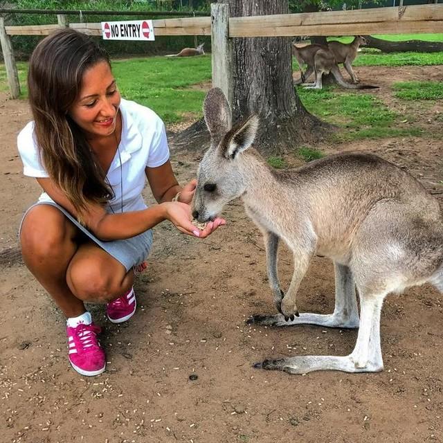 Last year, I was discovering for the first time the sweetness of a baby kangaroo!  Low Pine Koala Sanctuary, Brisbane, Queensland, Australia, January 2017.  #throwback #throwbacktuesday #tbt #australia #australie #queensland #brisbane #kangaroo #kangourou #bebekangourou #babykangaroo #memories #souvenir #loveismadetoshare #feedingwildlife #gazelleadidas #adidasgazelle #gazelle #travelaustralia #wanderlust #travelgram #globetrotteuse #globetrotter #lonelytraveller #oceania #traveloceania #oceanie #sanctuary #discoveraustralia #frenchgirl