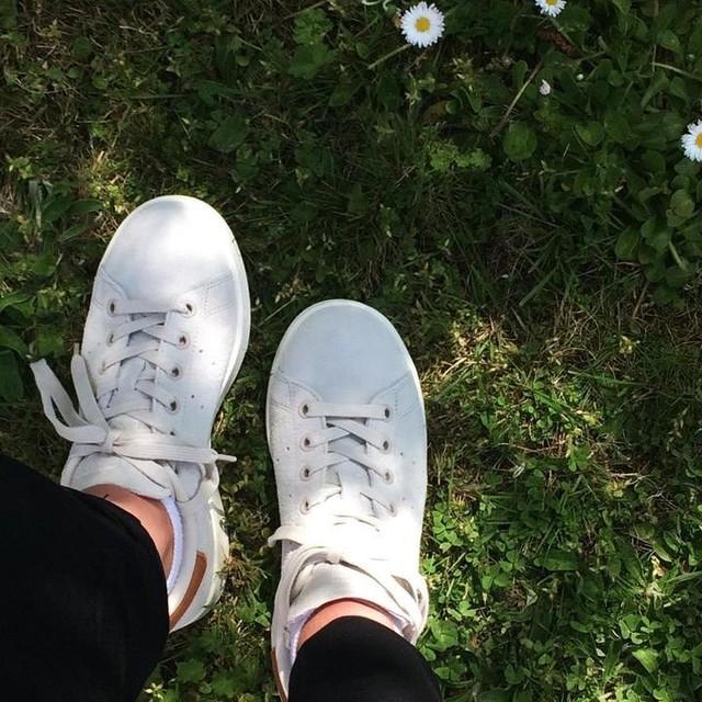 #stansmith #adidas 🐾