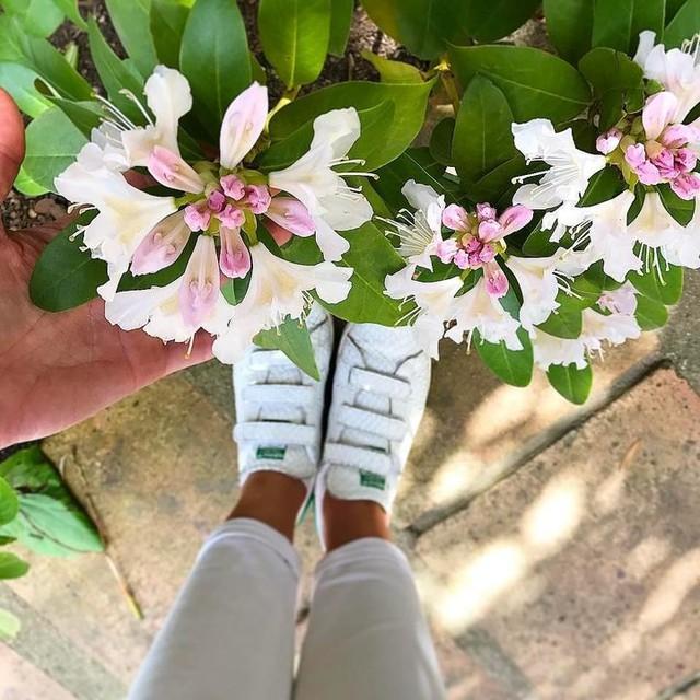 ✖Hello #summer 🌸✖Un peu de soleil à nouveau! En #stansmith by @adidas Marre de ce temps on n'a pas l'habitude nous sur Nice! Grosse journée pour moi aujourd'hui, il va falloir envoyer! Belle journée #igers 😘😘 #Summer #instagood #instadaily #cotedazur #frencheriviera #summeriscoming #spring