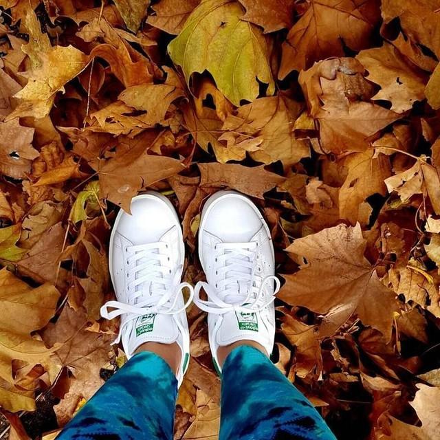 Caminata Otoñal #stansmith @adidasoriginals #otoño #fall #hojas #shoes #snickers #adidas #adidasOriginals #instashoes