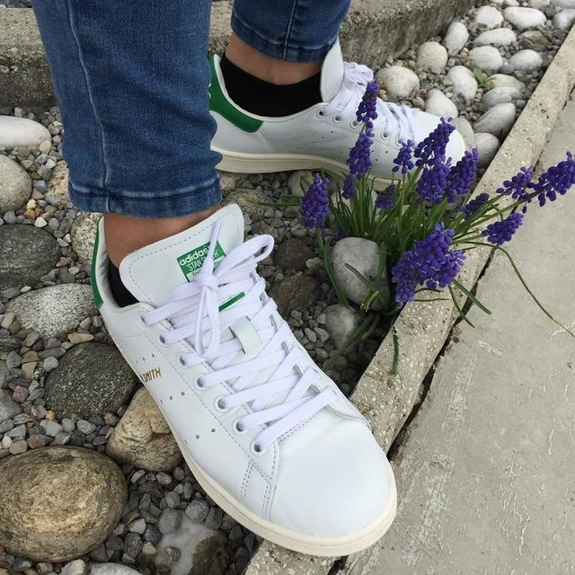 Per la serie #maimollare ... oltre ad ogni logica . . . #destiny  #europa44 #green #verdesperanza #flowers #rocksflowers  #stansmith #onlove #foreveryoung #casual #brescia #unconventional